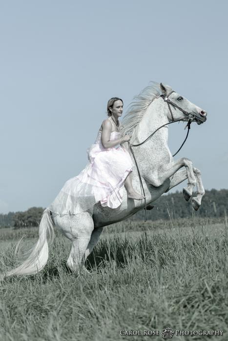 Pferdeshooting Pferdefotoshooting Fotoshooting mit Pferd Tierfotografin Herbstein