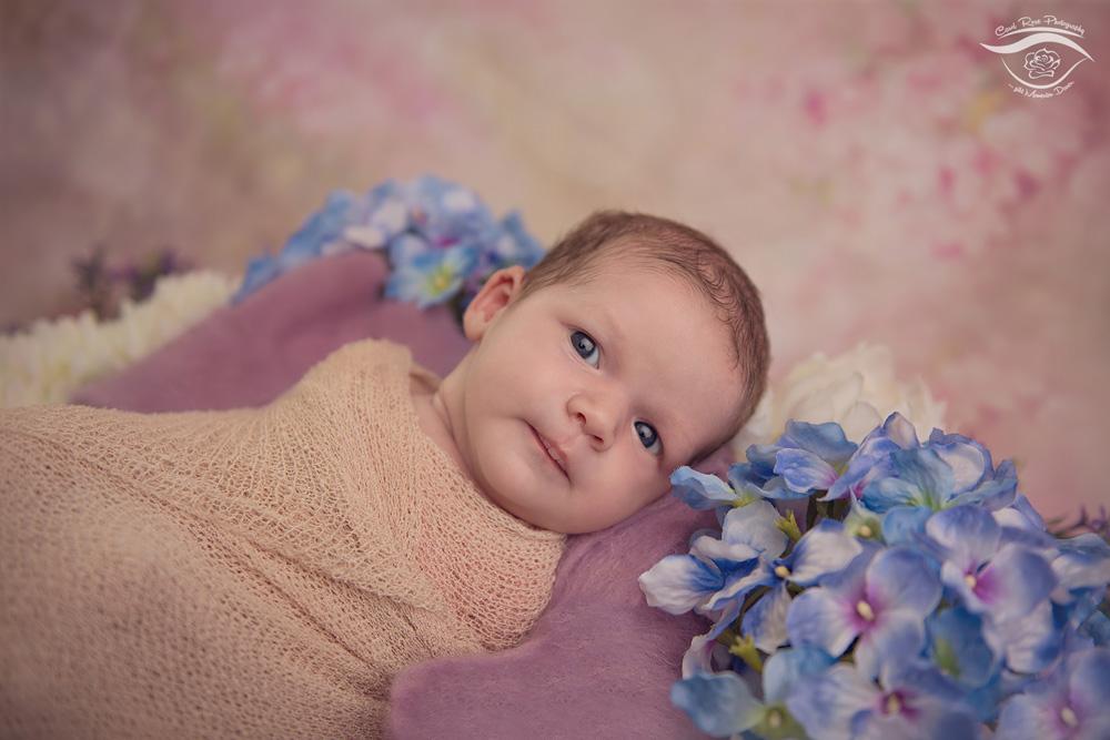 Newbornfotografie Fulda Babyfotograf Vogelsberg