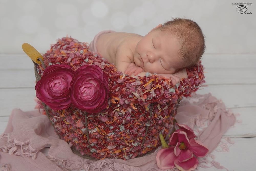 Neugeborenenfotos Laubach, Babyfotograf Schlitz